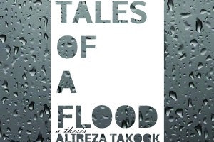 THESIS: Tales of a Flood