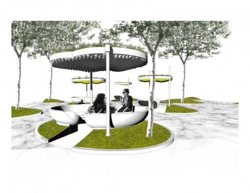 Perspective of the Networked Public Garden