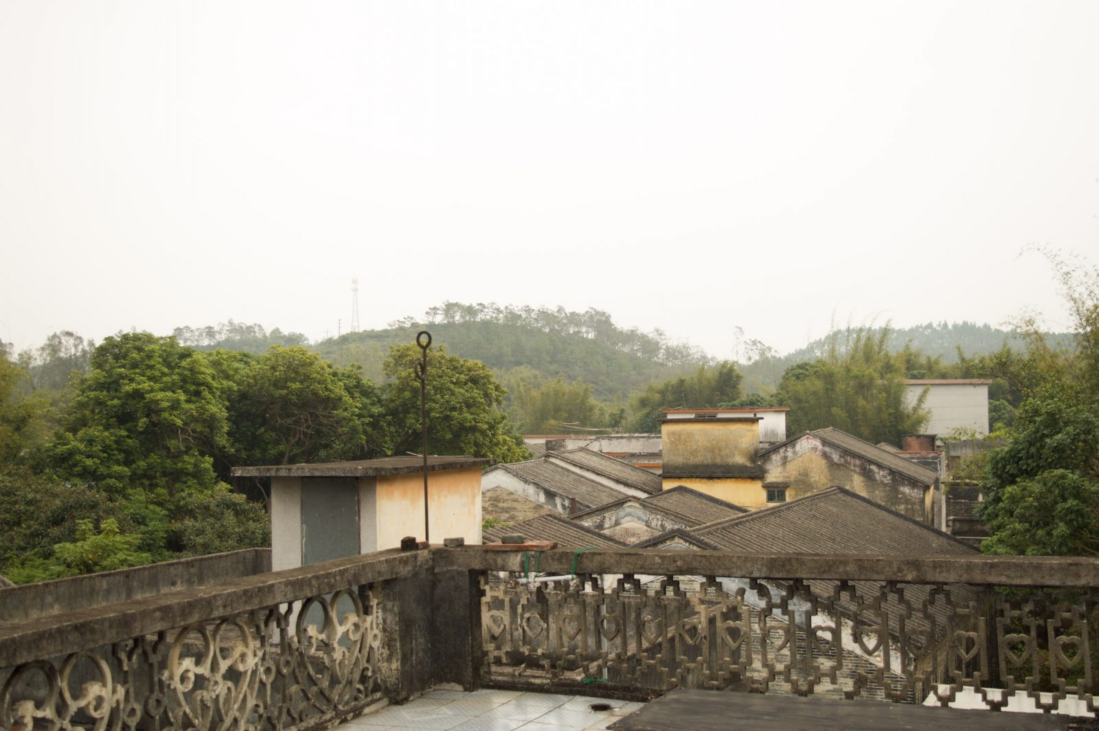 The view from the rooftop of a century-old home.
